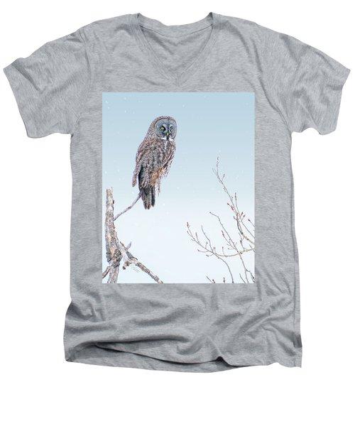 Majestic Great Gray Owl Men's V-Neck T-Shirt
