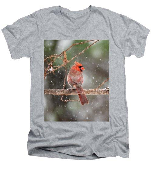 Male Red Cardinal Snowstorm Men's V-Neck T-Shirt
