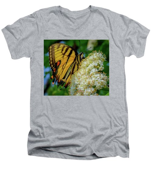 Manassas Butterfly Men's V-Neck T-Shirt