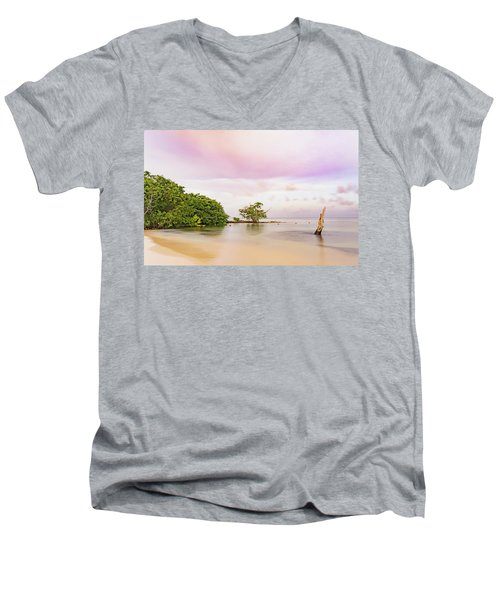 Mayan Sea Men's V-Neck T-Shirt