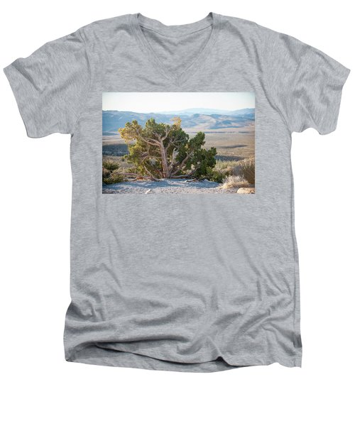 Mesquite In Nevada Desert Men's V-Neck T-Shirt