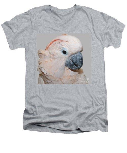 Moluccan Cockatoo Men's V-Neck T-Shirt