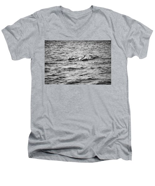 Mother Dolphin And Calf Swimming In Moreton Bay. Black And White Men's V-Neck T-Shirt