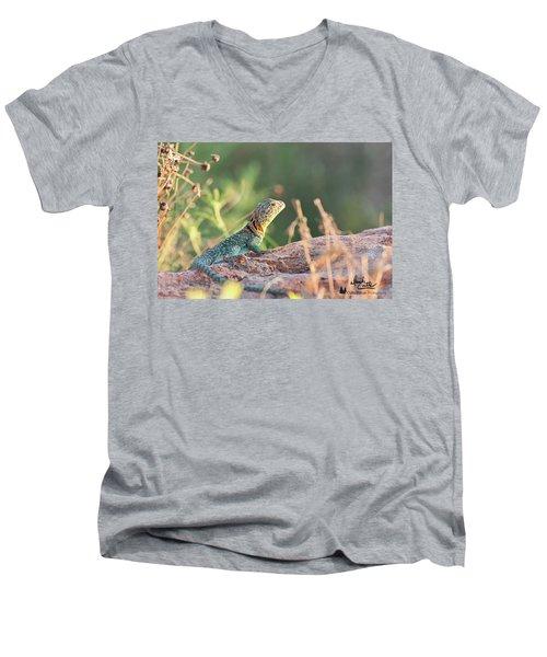 Mountian Boomer Men's V-Neck T-Shirt