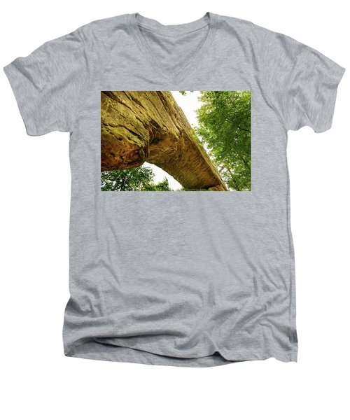 Natural Bridge 4 Men's V-Neck T-Shirt