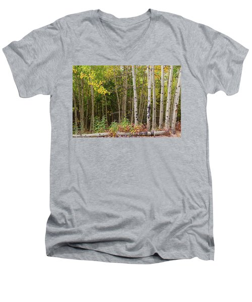 Men's V-Neck T-Shirt featuring the photograph Nature Fallen by James BO Insogna