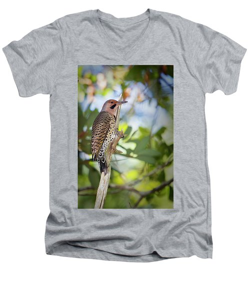 Northern Flicker Men's V-Neck T-Shirt