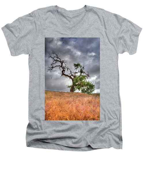 Old Oak Tree Men's V-Neck T-Shirt