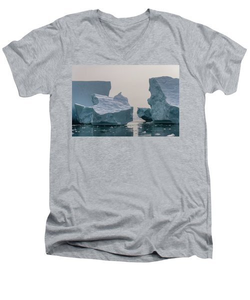 One Cube Or Two Men's V-Neck T-Shirt