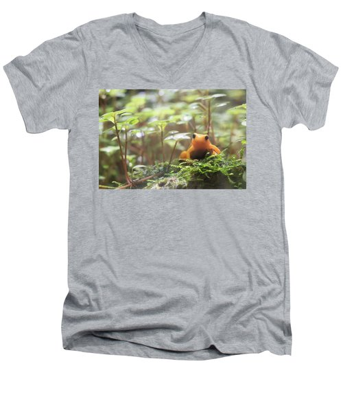 Men's V-Neck T-Shirt featuring the photograph Orange Frog. by Anjo Ten Kate
