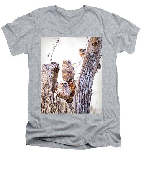 Owl Trio Standing Guard Men's V-Neck T-Shirt