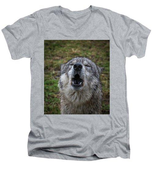 Owwwwwwwwwww Men's V-Neck T-Shirt