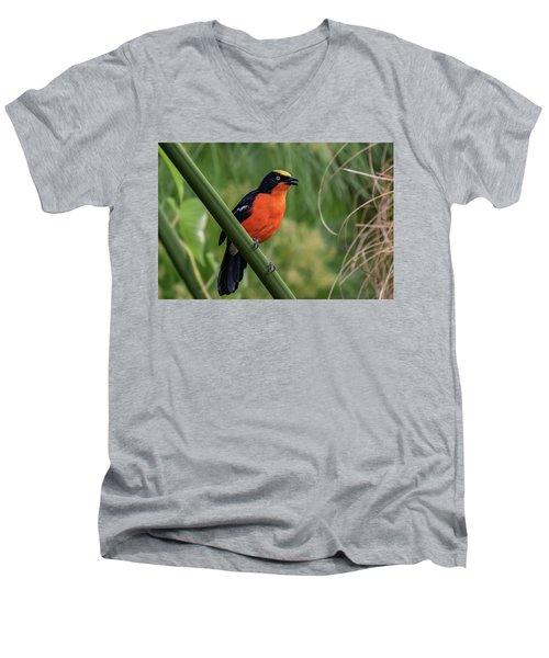 Papyrus Gonolek Men's V-Neck T-Shirt