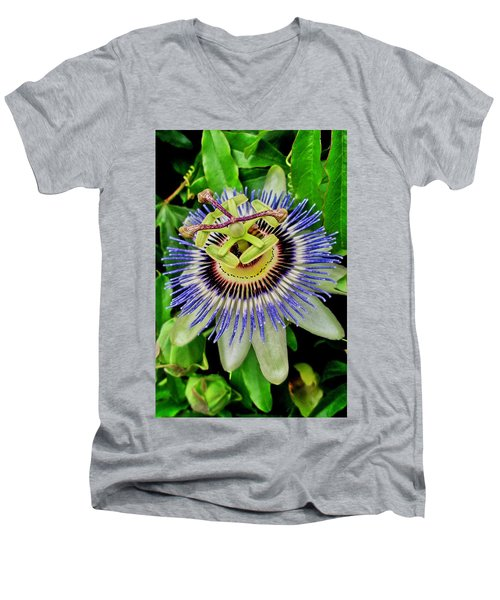Passion Flower Bee Delight Men's V-Neck T-Shirt