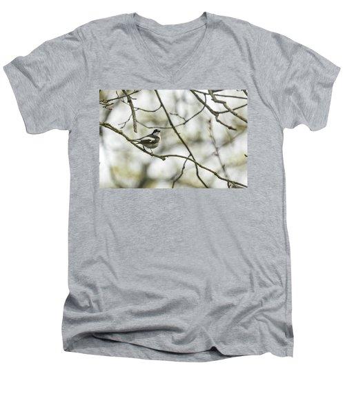 Pied Flycatcher Men's V-Neck T-Shirt