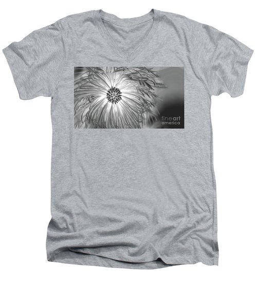 Pine Cone With Needle Halo Men's V-Neck T-Shirt