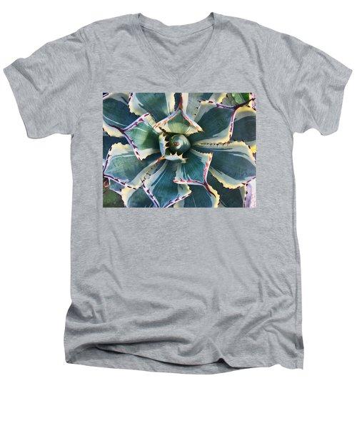 Pinwheel Succulent Men's V-Neck T-Shirt