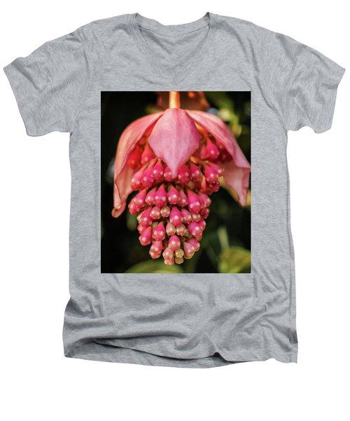 Pomegranate Flower Men's V-Neck T-Shirt