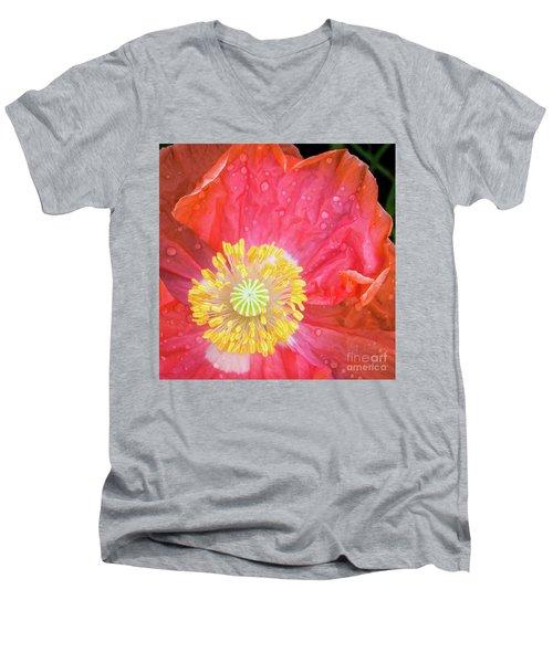 Poppy Closeup Men's V-Neck T-Shirt