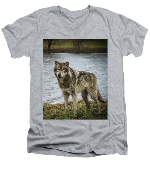 Posing By The Water Men's V-Neck T-Shirt