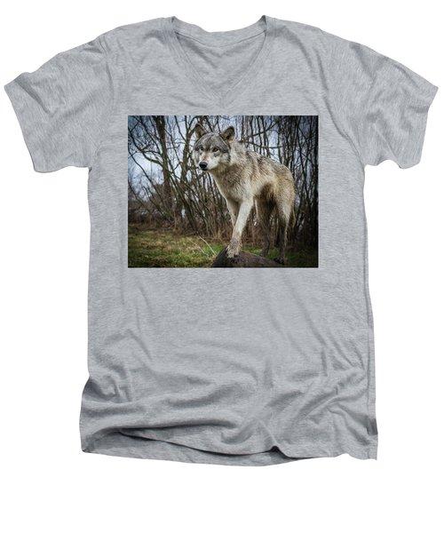 Posing Men's V-Neck T-Shirt