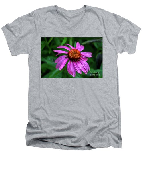 Purple Cone Flower Men's V-Neck T-Shirt