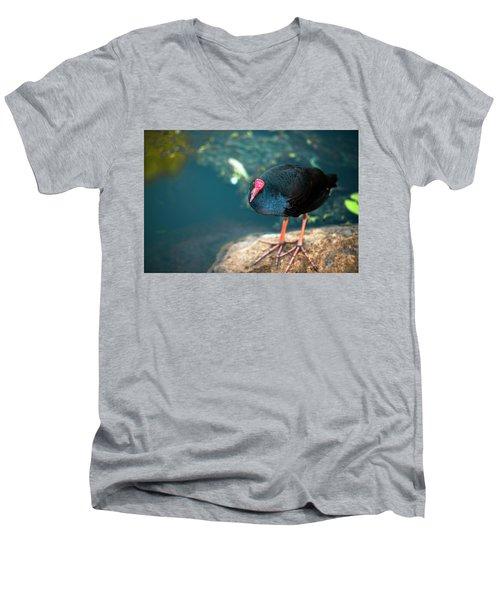 Purple Swamphenn Men's V-Neck T-Shirt