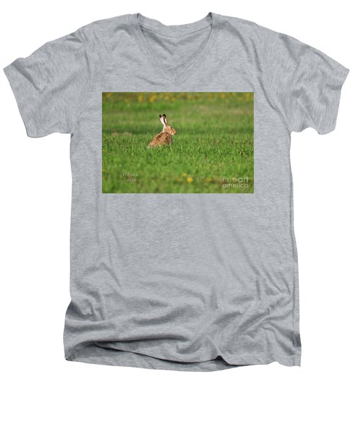 Rabbit Chews Men's V-Neck T-Shirt