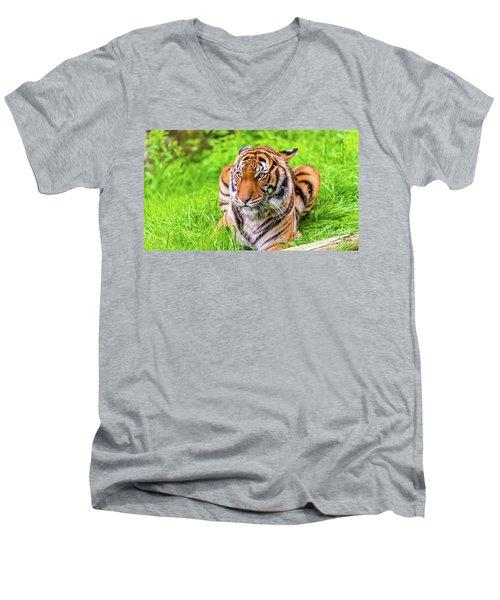 Ready To Pounce Men's V-Neck T-Shirt
