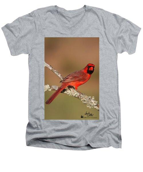 Red And Radiant Men's V-Neck T-Shirt