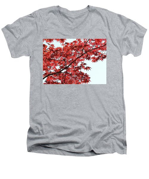 Men's V-Neck T-Shirt featuring the photograph Red Japanese Maple Leaves by Debi Dalio