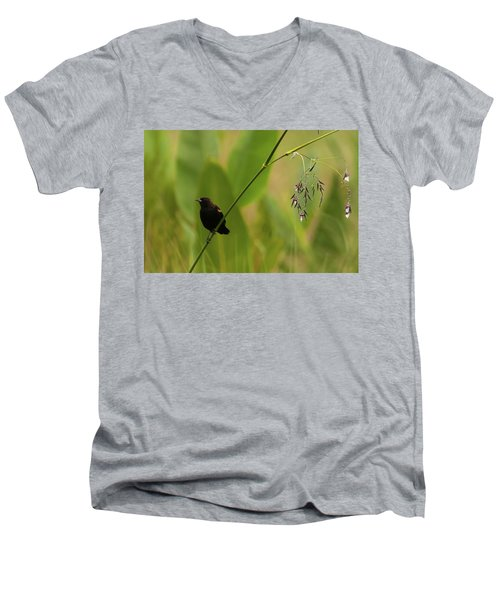 Red-winged Blackbird On Alligator Flag Men's V-Neck T-Shirt