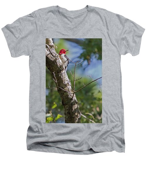 Redhead Woodpecker Men's V-Neck T-Shirt
