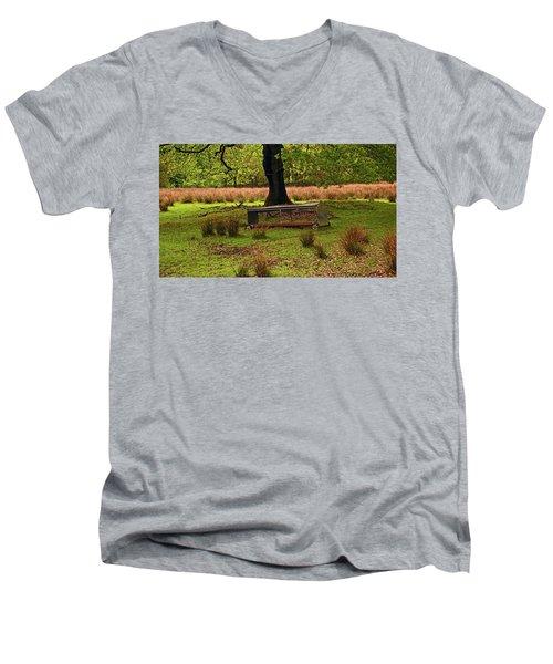 Rivington. Terraced Gardens. Feeding Trough. Men's V-Neck T-Shirt