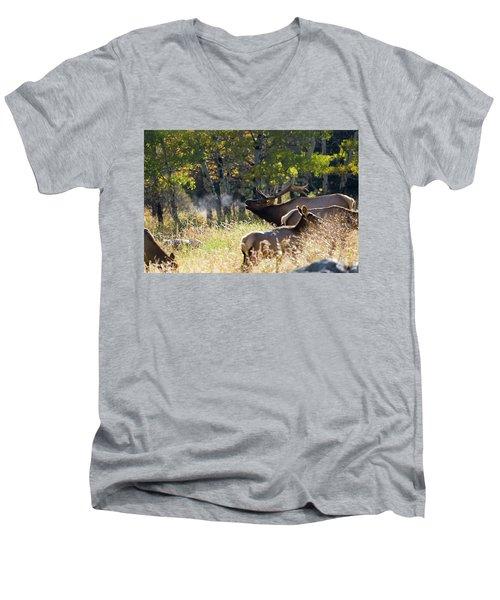 Rocky Mountain Bull Elk Bugeling Men's V-Neck T-Shirt