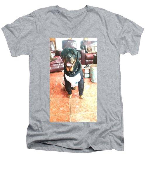 Rottie Men's V-Neck T-Shirt