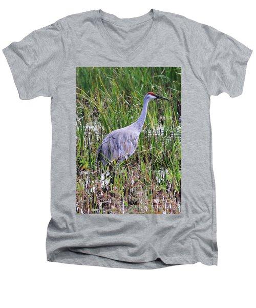 Sandhill Crane Men's V-Neck T-Shirt