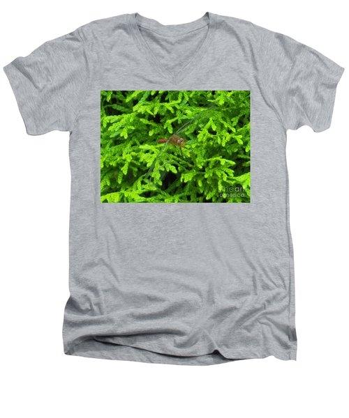Men's V-Neck T-Shirt featuring the photograph Scarlet Darter Male Dragonfly by Rockin Docks