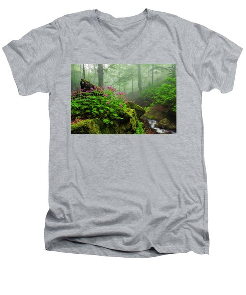 Scent Of Spring Men's V-Neck T-Shirt