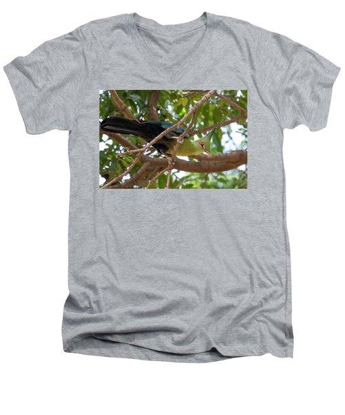 Schalow's Turaco Men's V-Neck T-Shirt