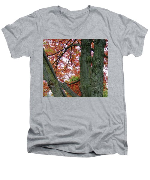 Seeing Autumn Men's V-Neck T-Shirt