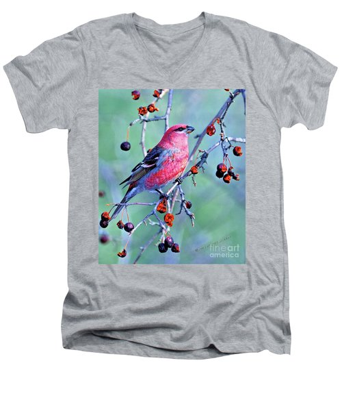 Sitting Pretty Men's V-Neck T-Shirt
