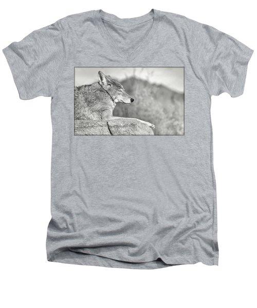 Sleepy Coyote Men's V-Neck T-Shirt