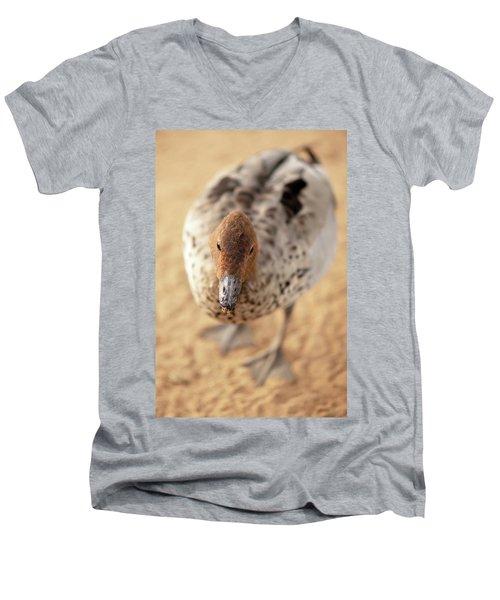 Small Duck On The Farm Men's V-Neck T-Shirt