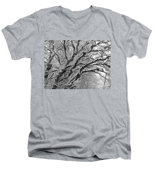 Snow Melt Men's V-Neck T-Shirt