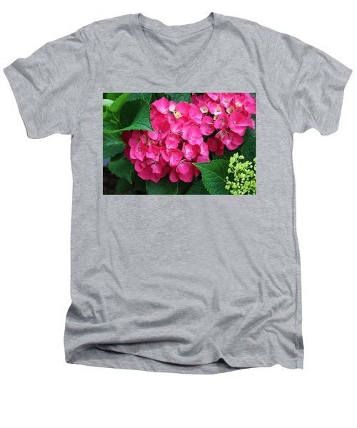 Spring Hydrangea Men's V-Neck T-Shirt