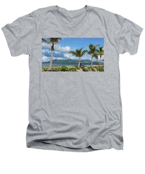St. John View Men's V-Neck T-Shirt