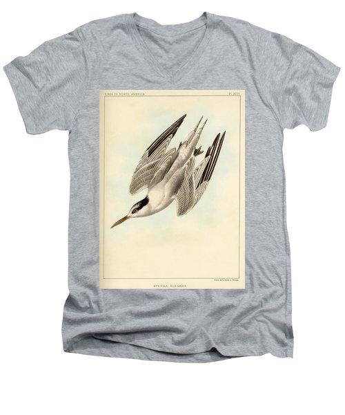 Sterna Elegans Men's V-Neck T-Shirt