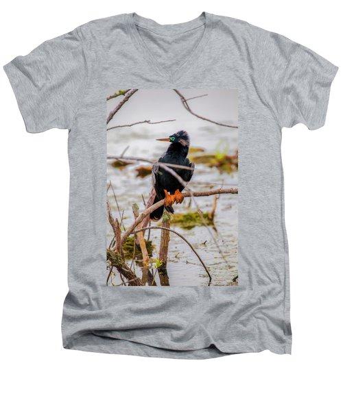 Stunning Anhinga Men's V-Neck T-Shirt