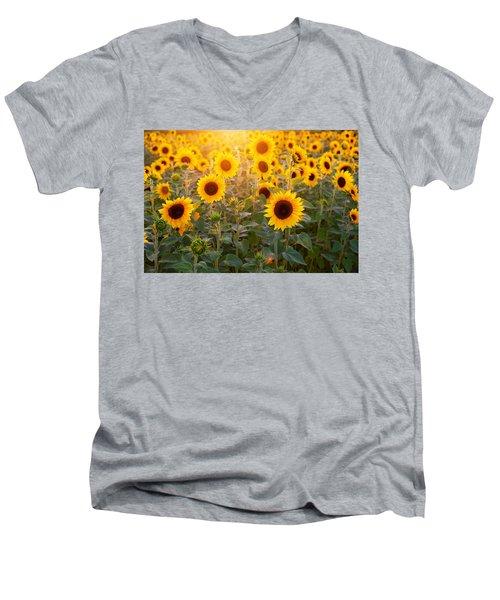 Sunflowers Field Men's V-Neck T-Shirt